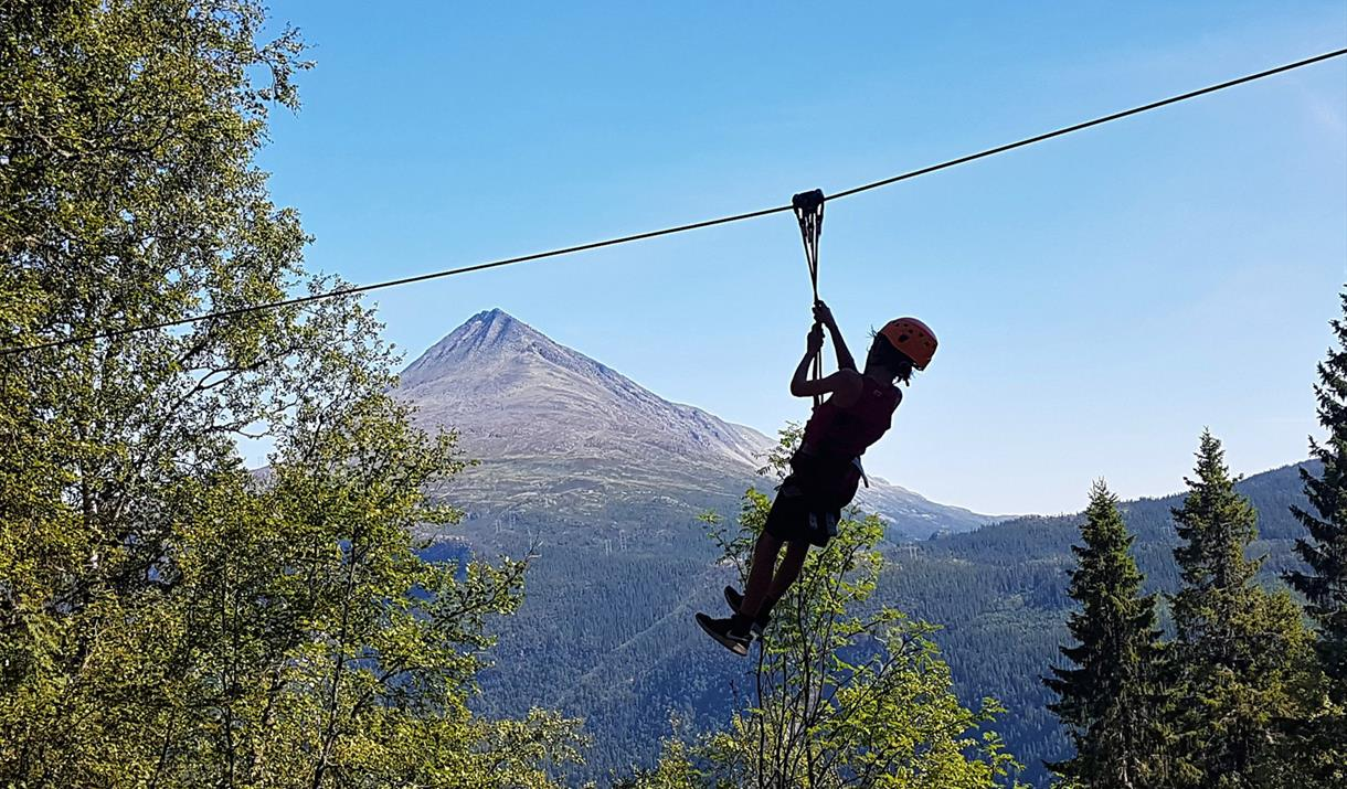 Rjukan climbing park offers great view from the tree tops.